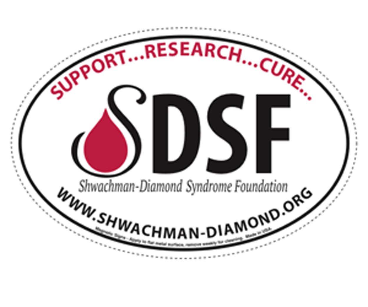 SDSF Magnet